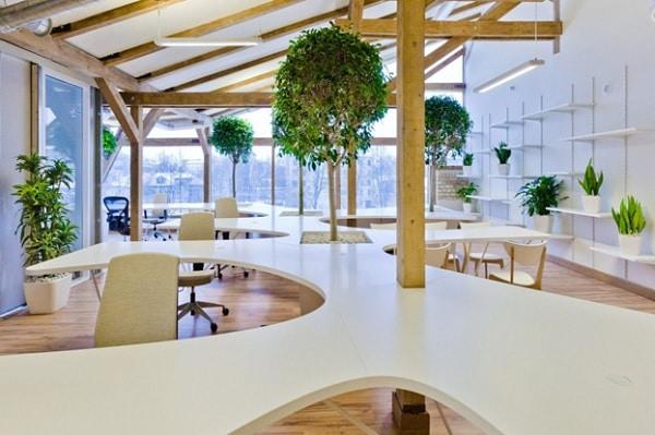 Mẫu thiết kế nội thất văn phòng số 1